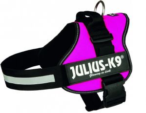 Julius K9 PowerHarness  - Pink - a Pet-Tastic harness